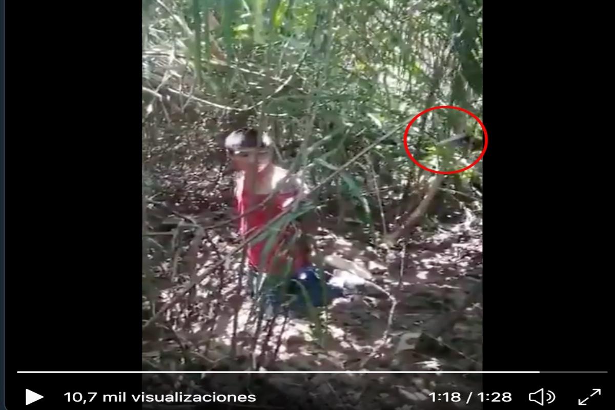 VIDEO: Matan a jovencito con más de 10 balazos, aunque suplicó por su vida no lo perdonaron