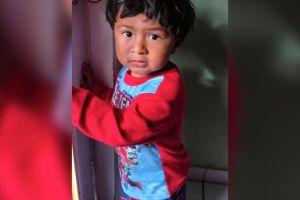 La familia del niño hispano de 3 años que murió atropellado mientras vendía flores demanda a Fiat-Chrysler