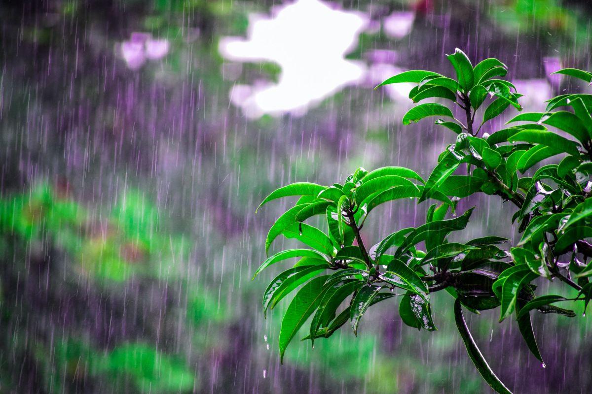 El agua de lluvia posee interesantes propiedades esotéricas.