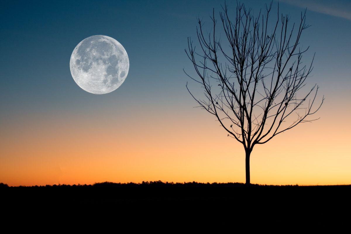 Luna llena de Esturión: Cómo afecta a cada signo zodiacal