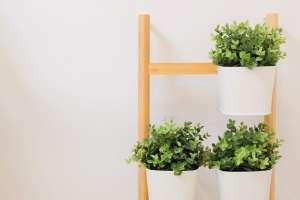 Los mejores soportes para plantas que ahorran espacio en tu casa