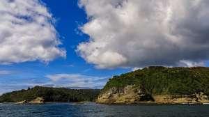 """Guafo: la controversia en Chile por la millonaria puesta en venta de una isla que es """"tierra ancestral"""" y tesoro de la biodiversidad"""