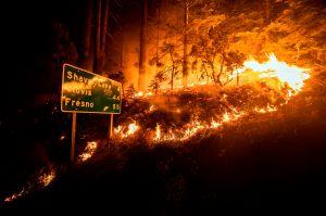 Se consume California entre incendios, pandemia y una ola de calor