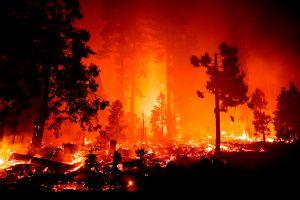 El incendio forestal más grande de California generó dos tornados de fuego masivos