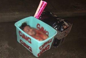 FOTOS: Grupo Élite del CJNG descuartiza brutalmente a hombre junto a narcomensaje