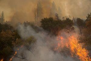 Al menos 14 bomberos y operadores lesionados cuando los rodeó el fuego en California