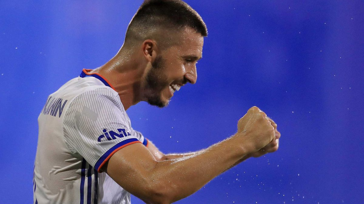 Haris Medunjanin celebra su impresionante gol.
