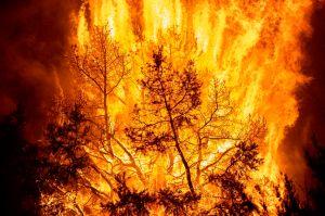 Incendios en Colorado: reportan 2 muertes y más evacuaciones