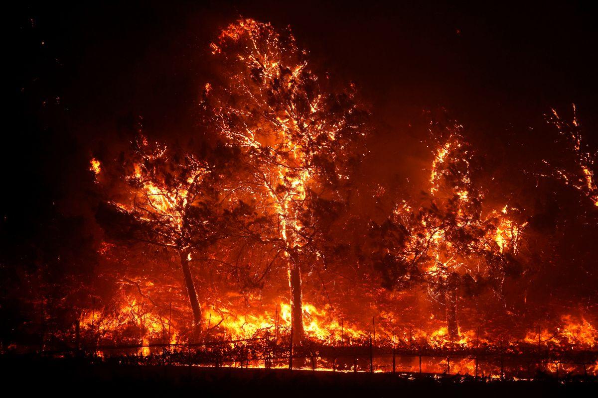 El Glass Fire avanza rápidamente en el área de Napa, California.