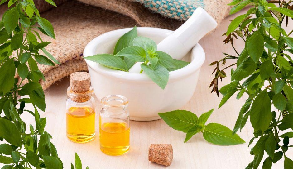 Learn how to prepare homemade oregano oil, an extraordinary antibiotic, analgesic and natural anti-inflammatory