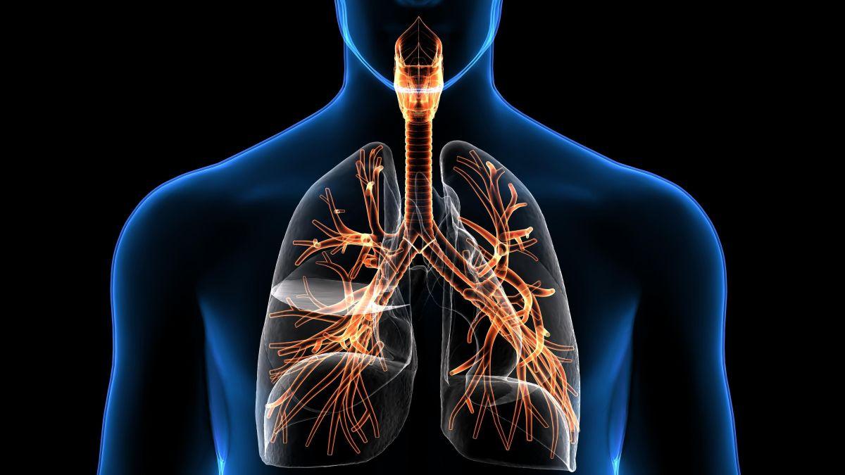 Suplementos de Vitamina C: La importancia de consumirlos para prevenir enfermedades respiratorias