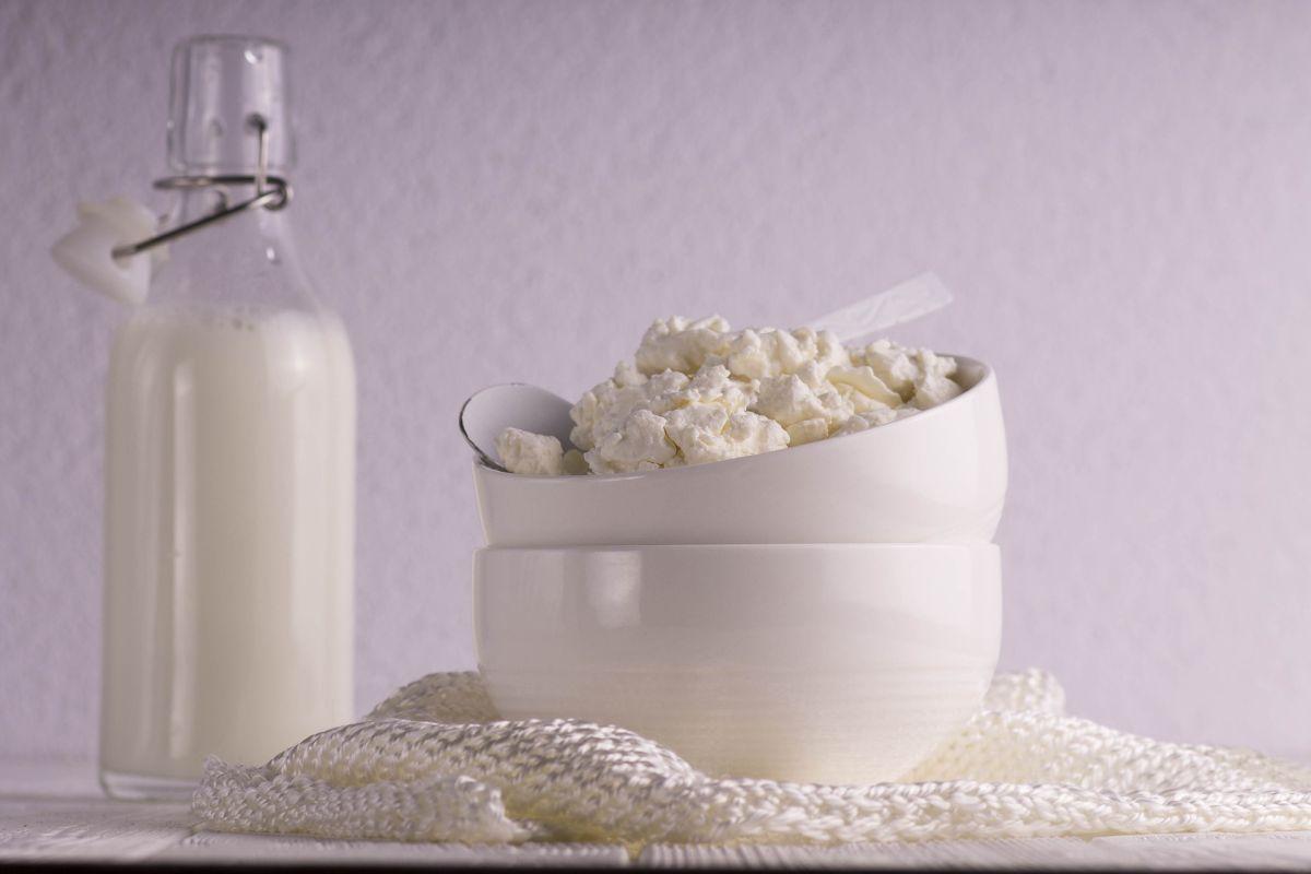 Superalimentos medicinales: ¿Por qué el queso cottage es tan saludable y nutritivo?