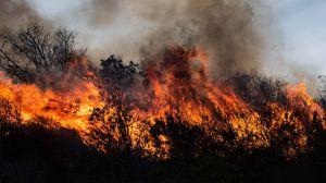 """""""10 veces el tamaño de la ciudad de Buenos Aires"""": los masivos incendios que han causado un """"ecocidio"""" en Argentina"""