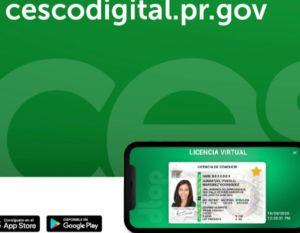 Licencias de conducir virtuales están a la vuelta de la esquina en Puerto Rico; gobernadora firma la ley