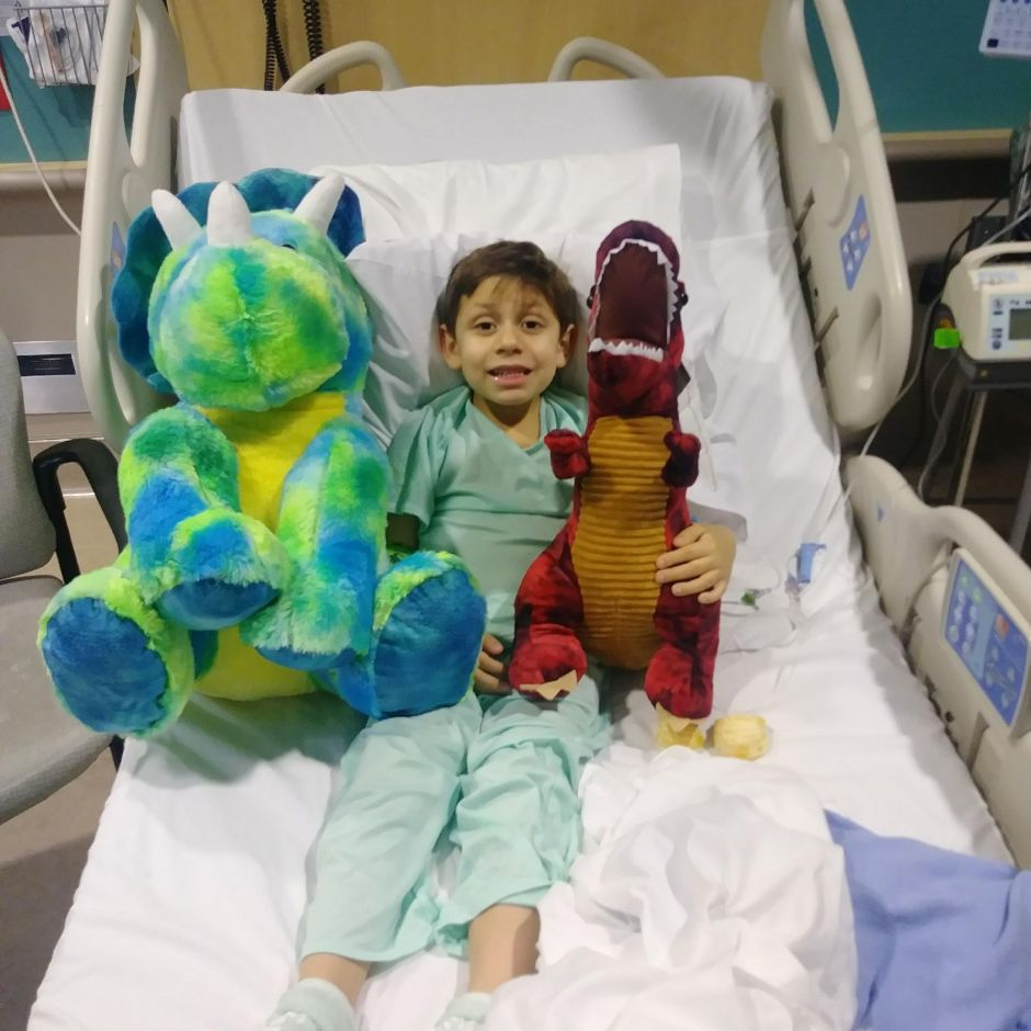 Niño de 8 años conoce virtualmente a donante que le salvó la vida