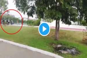 VIDEO: Así rescataron restos de hombre que cocodrilo mató a mordidas; esto pasará con el animal