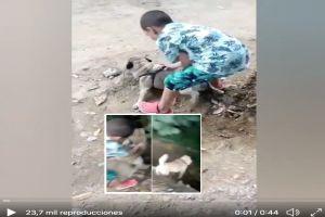 VIDEO: Madre graba a su hijo lanzar por barranco a perrita; ¡Presume que lo ha hecho 3 veces!