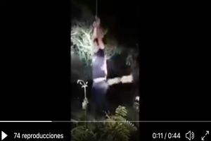 VIDEO: Sicarios agarran de piñata a hombre, lo cuelgan en árbol y le dan brutales tablazos