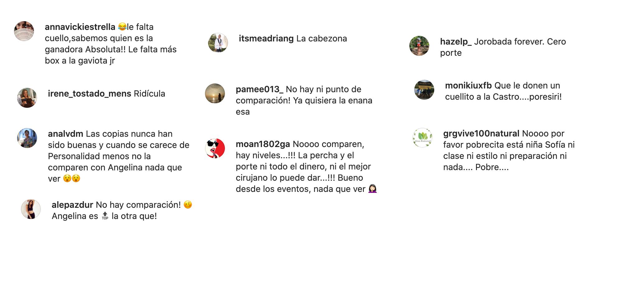 Comentarios negativos a Sofía Castro