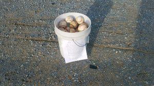 Un abuelo regala decenas de pelotas de béisbol junto con una nota muy emotiva