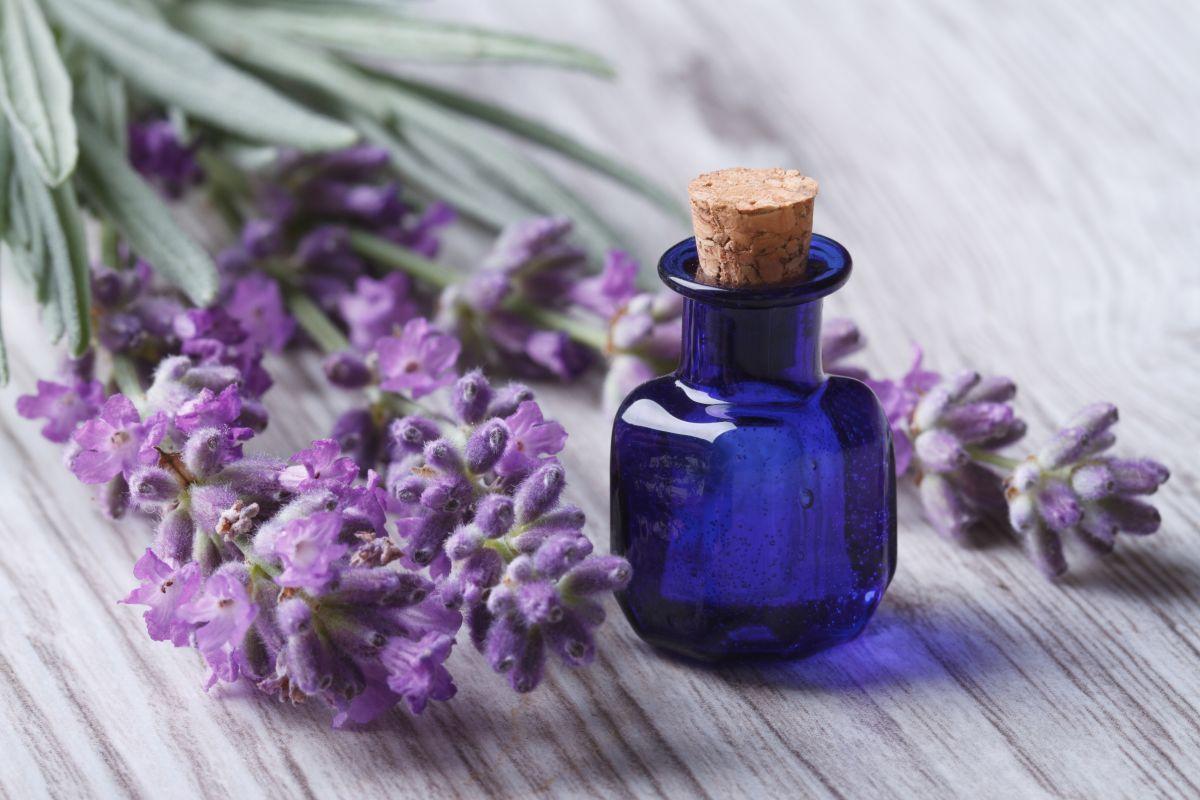 Los mejores aceites aromáticos corporales para nutrir y perfumar tu piel