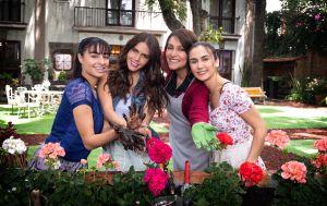 Univision lanza primer promocional de 'Vencer El Desamor', su nueva telenovela estelar