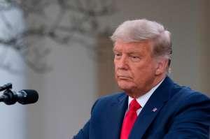 """Quiénes son los gerentes del juicio político a Trump, que defenderán el 'impeachment"""" ante el Senado"""