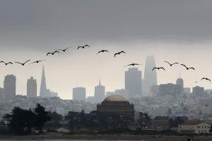 Aparece monolito gigante hecho de galleta en lo alto de la ciudad de San Francisco