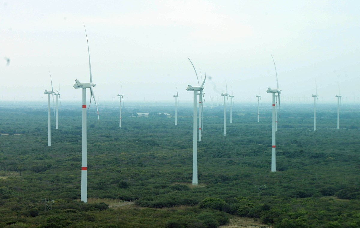 México reducirá energías renovables tras responsabilizarlas de mega apagón de luz