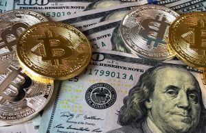 """Qué es el """"dólar digital"""" que la Secretaria del Tesoro sugirió que debiera crearse"""