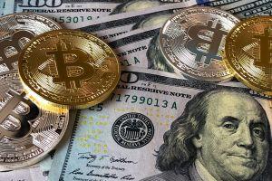 Criptomonedas: Novatos venden sus activos ante temor a pérdidas y los veteranos aprovechan y compran