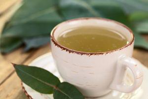 Además de aliviar los resfriados y expulsar las flemas conoce los beneficios del té de eucalipto