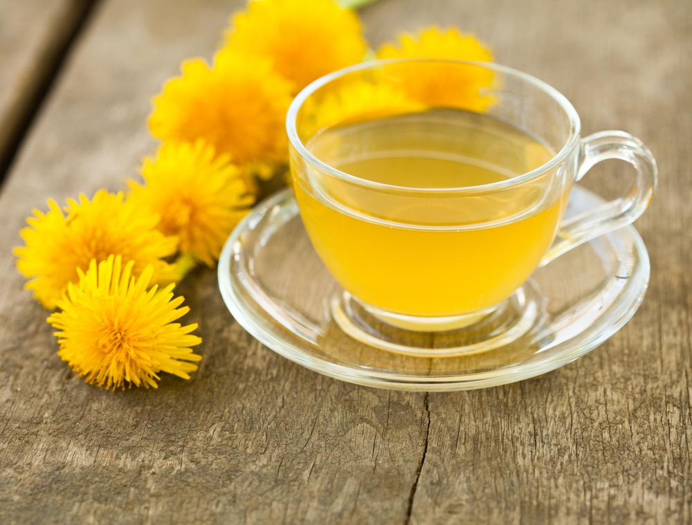 ¿Por qué el té de diente de león puede aliviar la inflamación y prevenir infecciones urinarias?
