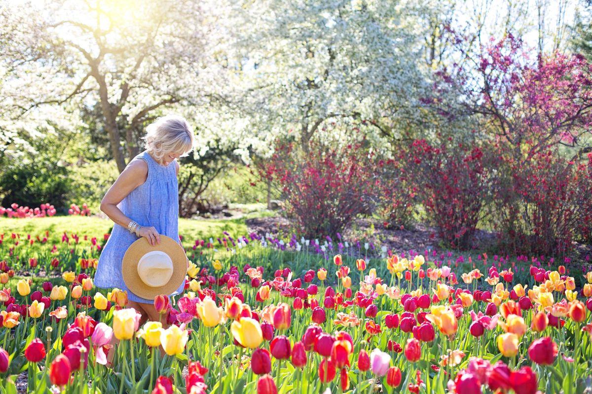Qué rituales hacer para comenzar a recibir la energía renovadora de la primavera en pleno invierno