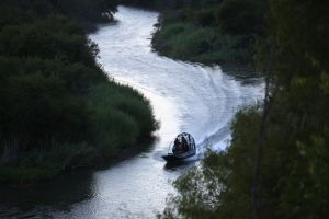 2 congresistas de Texas buscan combatir a enemigo de la Patrulla Fronteriza: los juncos del Río Grande