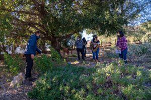 Las plantas nativas, una buena opción para enfrentar la sequía