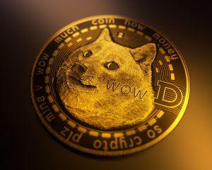 Dogecoin supera por primera vez los 50 céntimos y hace otro  nuevo máximo histórico