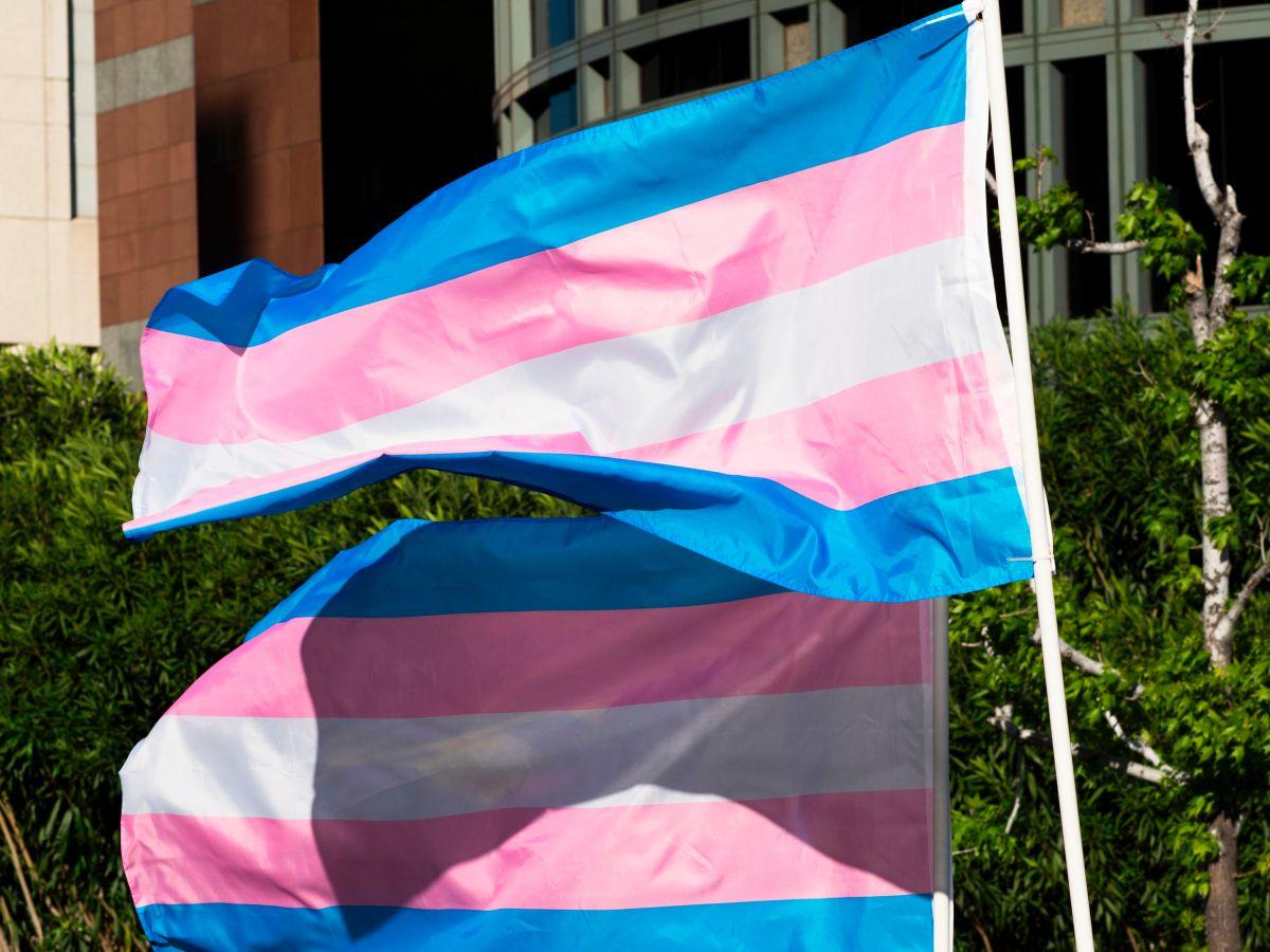 Arkansas el primer estado en prohibir tratamientos médicos de cambio de sexo a menores transgénero