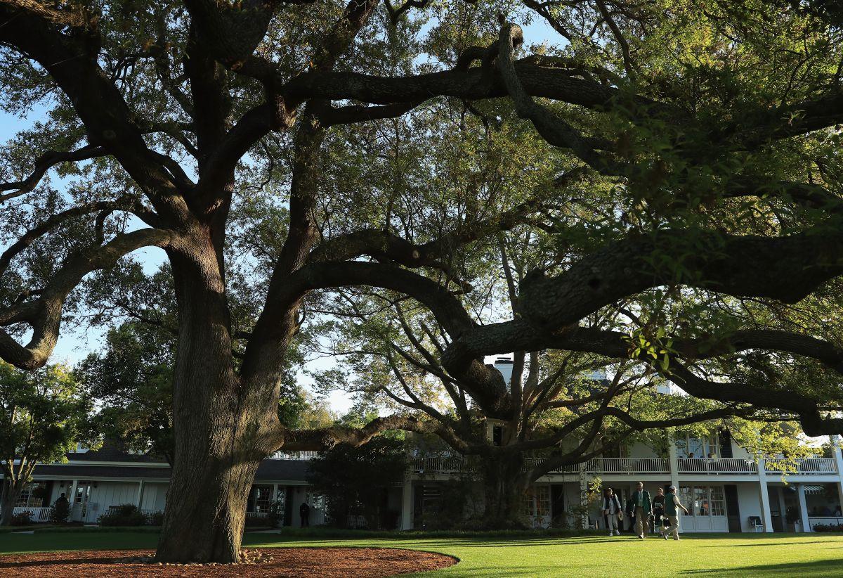 Confesión de escándalo: un guionista esparció cenizas de su padre en el mítico campo de Augusta National, sede del Masters
