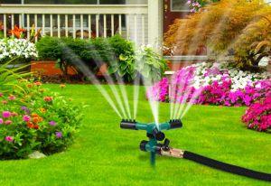 Las mejores mangueras y sistemas de riego para el mantenimiento de tu jardín