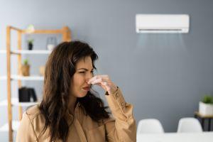 ¿Vives en una casa pequeña y con poca ventilación? 3 productos que eliminan olores desagradables en el hogar