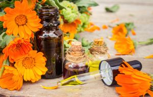 Alivia heridas, calma y desinflama la piel con estos aceites de caléndula