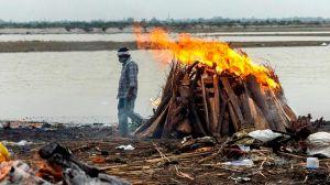 Coronavirus en India: decenas de cadáveres más aparecen en el río Ganges