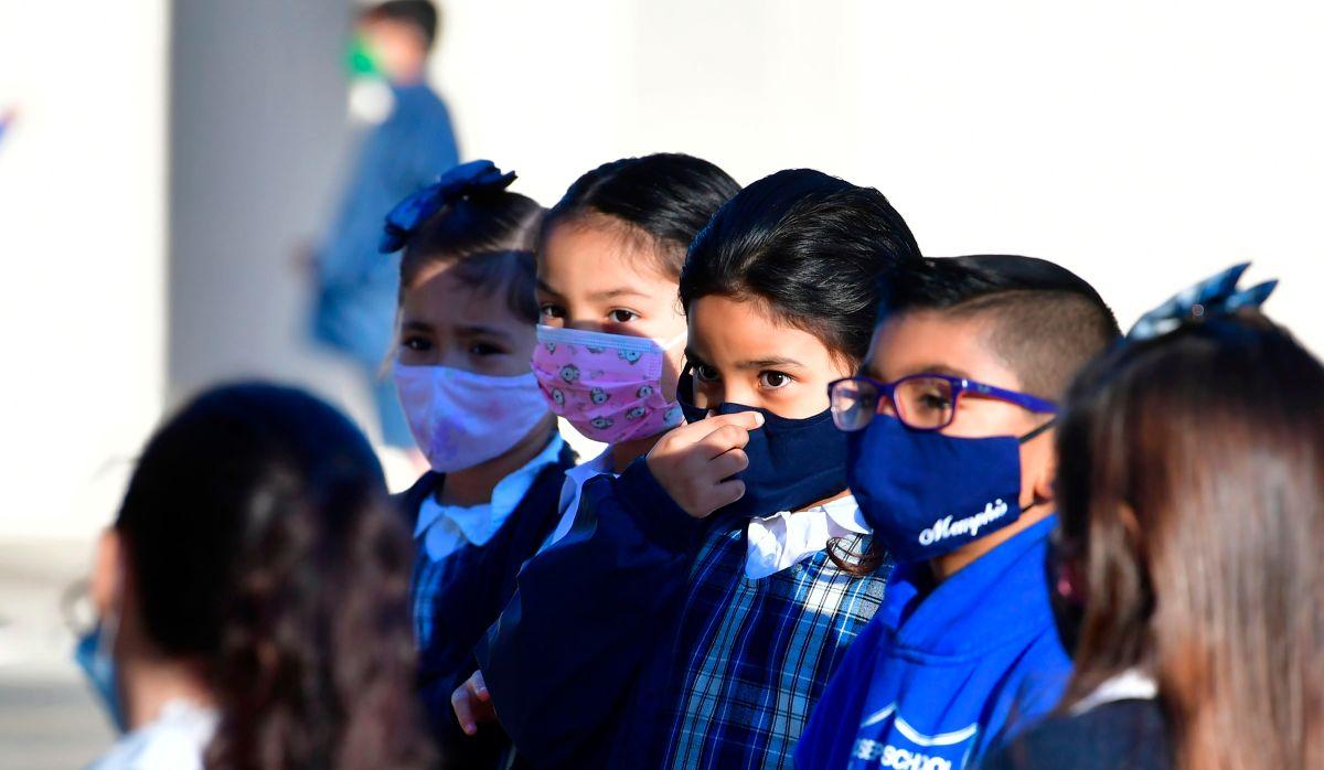 SHIELDS: Ayudando a las familias del sur de Los Ángeles