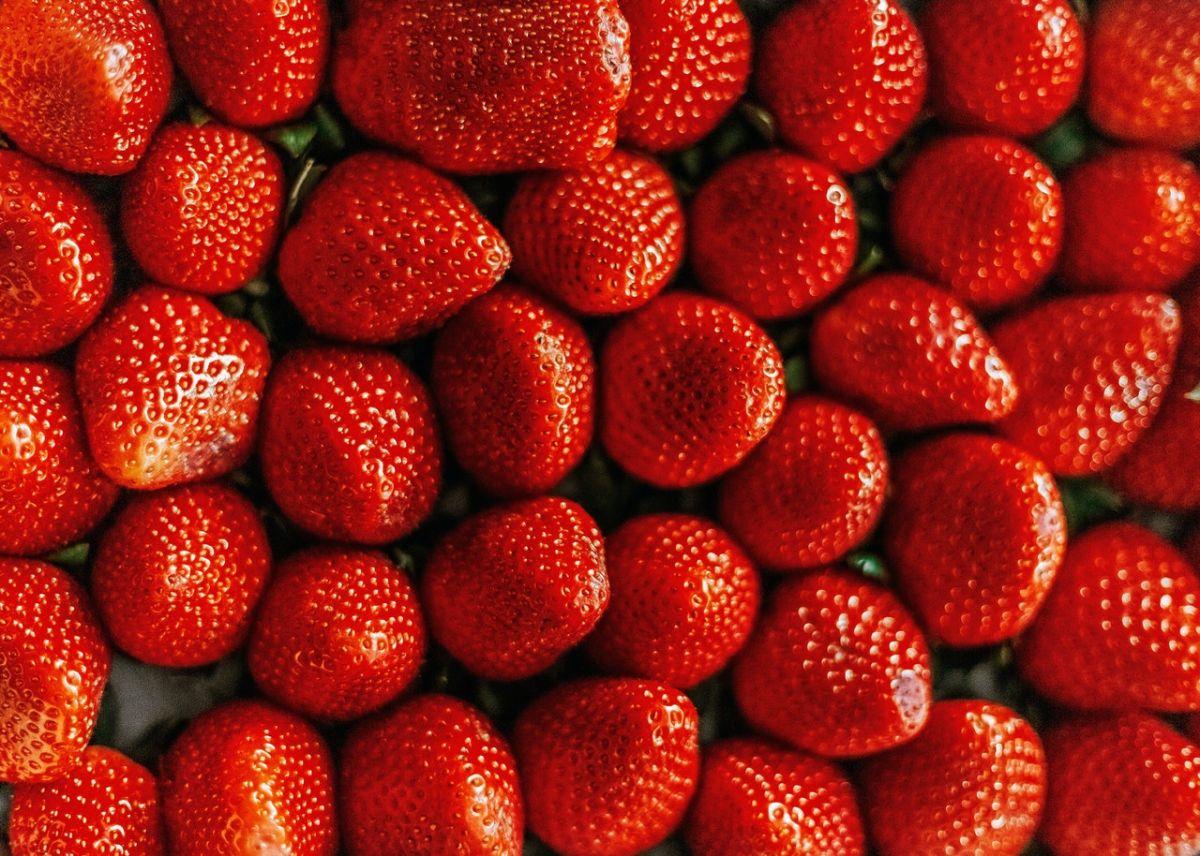 Bayas: las mejores frutas para el cerebro, asociadas a menor riesgo de Parkinson y Alzheimer