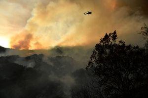 Revelan nombre del hispano arrestado bajo sospecha de provocar gran incendio en Pacific Palisades
