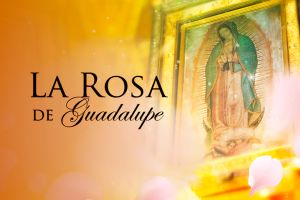 El airecito de 'La Rosa de Guadalupe' hace de las suyas en el primetime de Univision