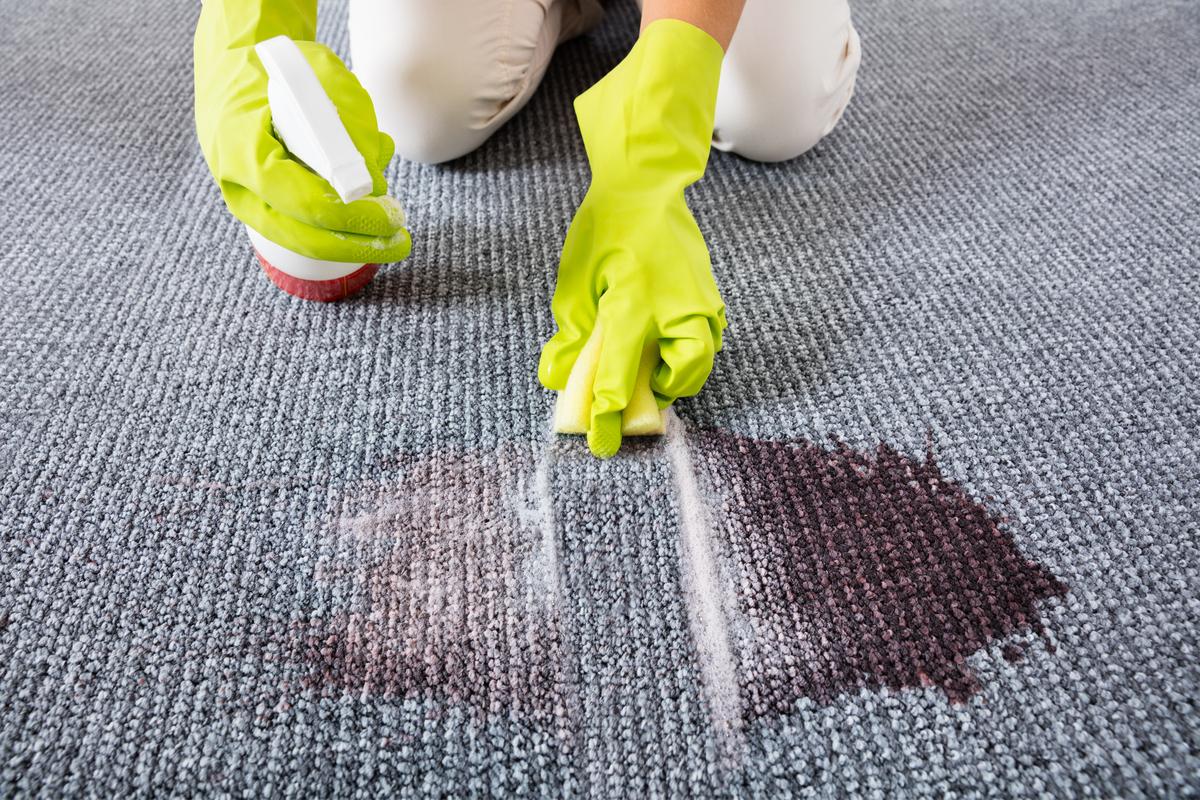 Los mejores limpiadores de telas y alfombras para tener tu hogar impecable