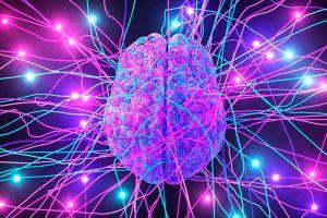 ¿Por qué nuestro cerebro a veces nos sabotea?