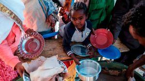 La devastadora hambruna creada por el hombre en Tigray